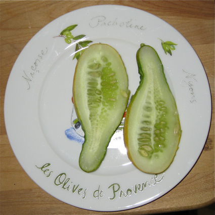 Aeroponic Cucumber on a plate